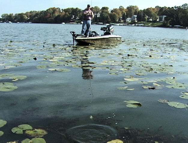 Image of BW Retrieving a spinnerbait from the weeds